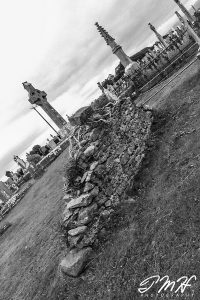 Overgrown Crypt
